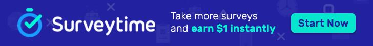 survey, piackutatás, pénz, kereset,. otthoni, home