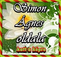 Simon Ágnes (alliteracio) oldala